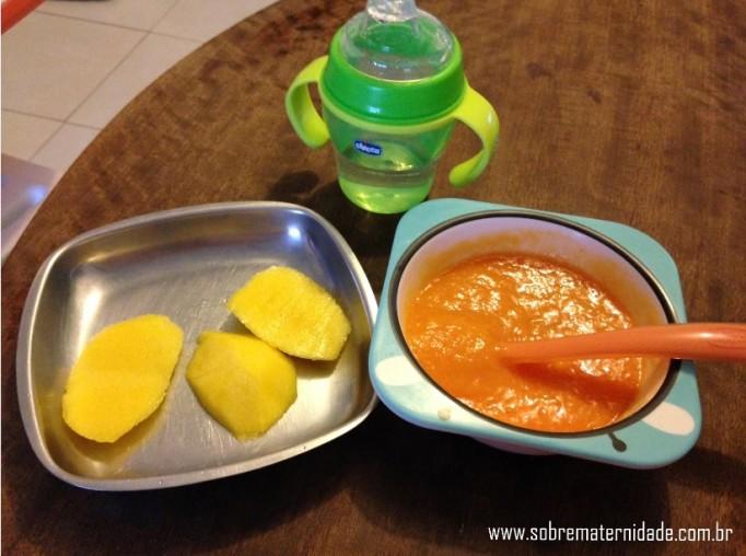 Iniciando os alimentos s lidos na dieta do beb - Alimentos bebe 8 meses ...